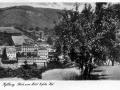 1941-Blick-zum-Eifeler-Hof