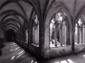 1956.Kreuzgang-Stiftskirche_11
